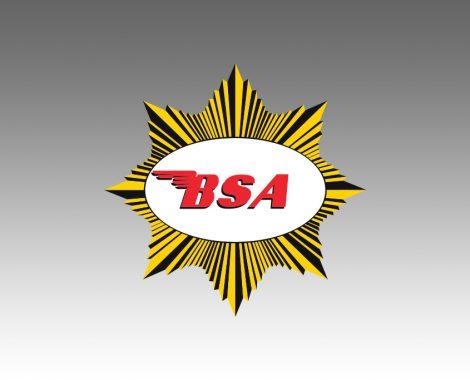 BSA-shooting-star2